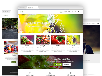 An assortment of easy–to–re–design site templates